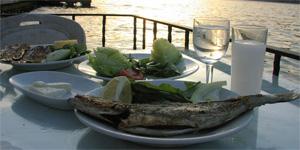 Sarıyer'de rakı balık yapabileceğiniz 5 mekan tavsiyesi