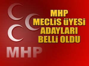 MHP Meclis Üyesi adayları
