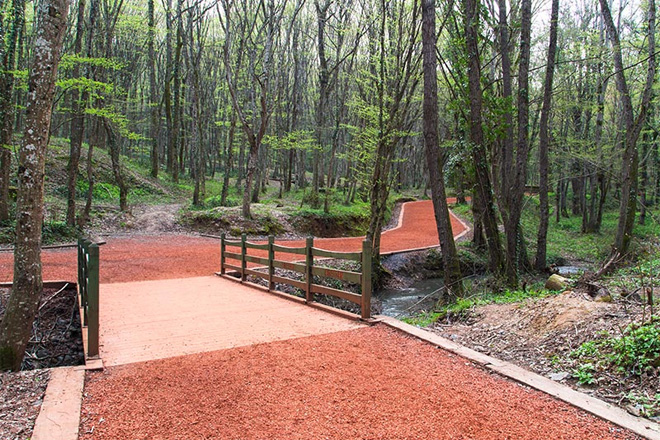 belgrad ormanı yürüyüş