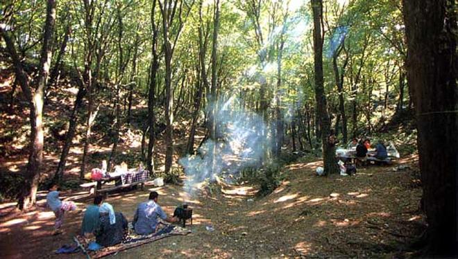belgrad fatih ormanı piknik