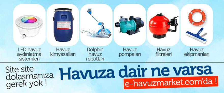 haviz-ic1-001.jpg