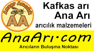 kafkas-arisi-001.png