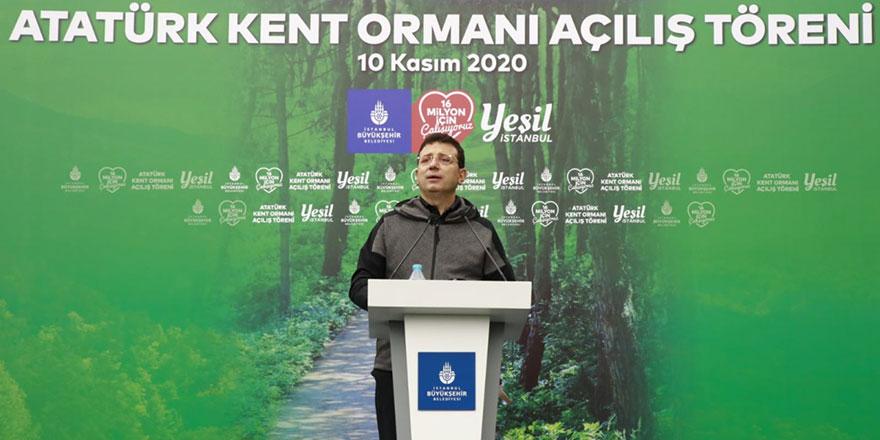orman7.jpg