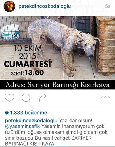 sariyer_barinak_yorum36.jpg