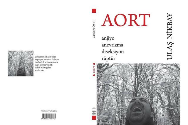 ulas-akbay-aort.jpg
